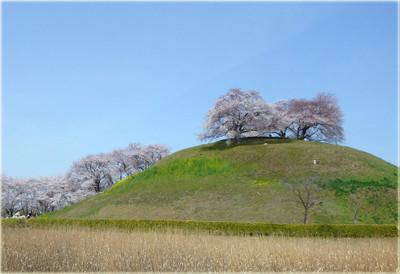 Maruhakayamakofun